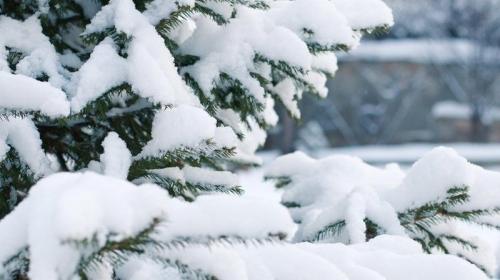Читать: Соцсети с юмором отреагировали на снегопады в Украине