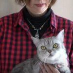 Читать: Сеть насмешил кот, которому не понравилось у ветеринара