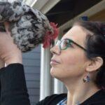 Читать: Родственная душа: американка потратила $10 тысяч на лечение своей курицы