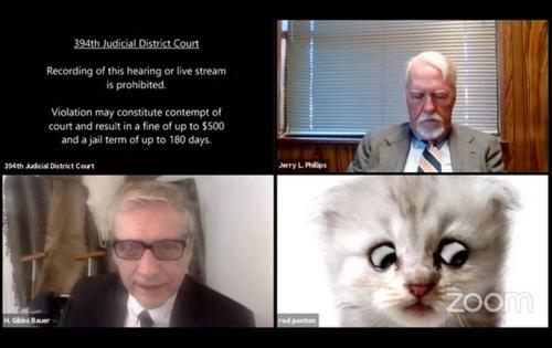 Юристу во время онлайн-заседания суда пришлось доказывать, что он – не кот